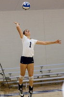 Walsh at Hillsdale College Volleyball Oct 5 2013