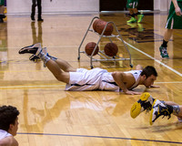 Mendon vs Hillsdale High Boys Varsity District Basketball March 3 2014