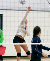 Hillsdale High Varsity Volleyball at Columbia Central League Oct 29 2013