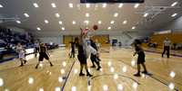 Wayne State at Hillsdale College Womens Basketball Jan 9 2014