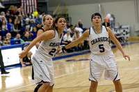 Walsh at Hillsdale College Womens Basketball Feb 22 2014