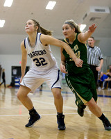 Tiffin at Hillsdale College Womens Basketball Jan 16 2014