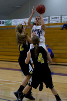 Ohio Dominican at Hillsdale College Womens Basketball Feb 8 2014